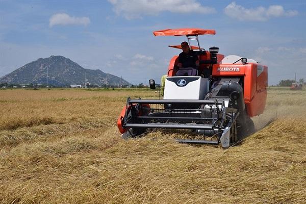 Máy gặt đập liên hợp Kubota nhập khẩu Thái Lan